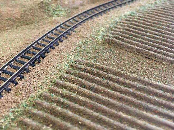 一応の完成をみた、ダンボール製の畑です。このあと、細部が気になって雑草を増やしたりしています。