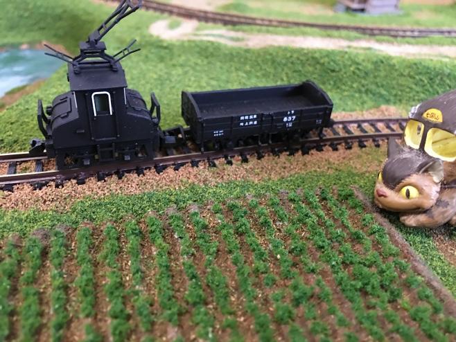 自作ニンジン畑の横をデキ3が走ります。なんとなくメルヘンです。あれ?右手に何処かで見たネコさんがいらっしゃいますね…。
