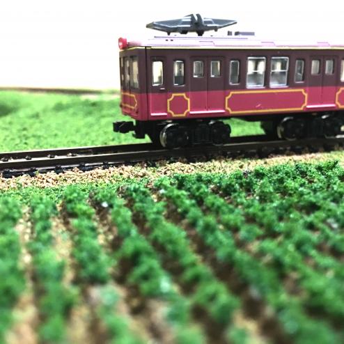 銚子電鉄デハ1001のBトレインと記念撮影。一本づつ植えたニンジンが情景を引き立てます!